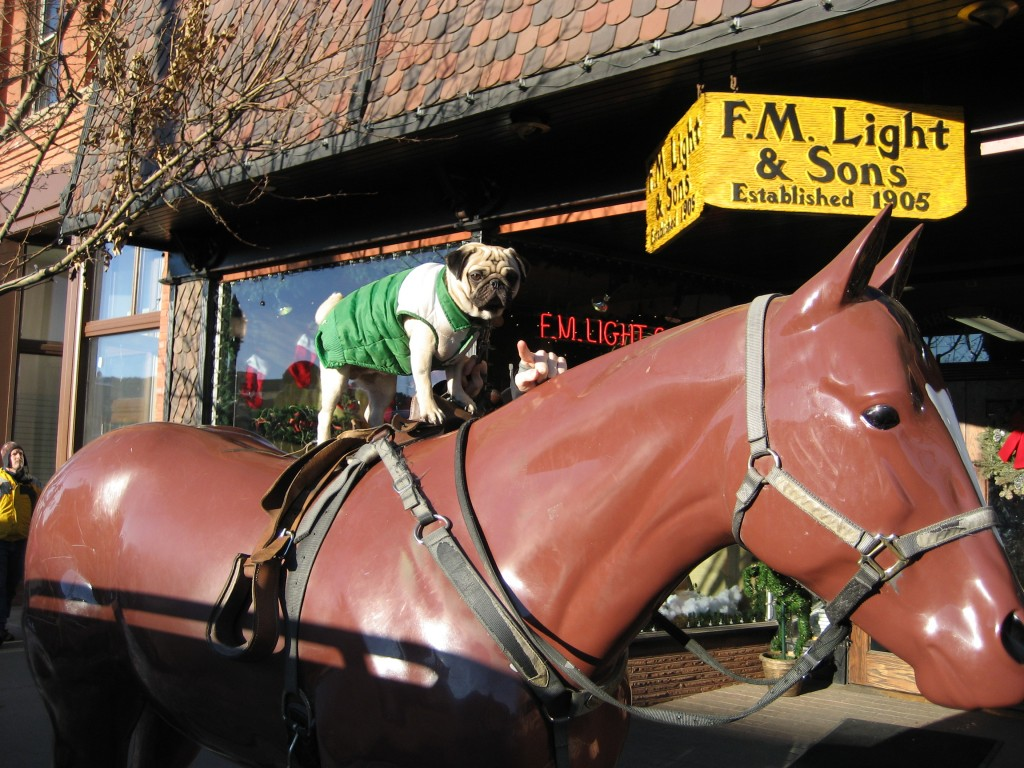Zelmo on the horse statue outside F.M. Light & Sons