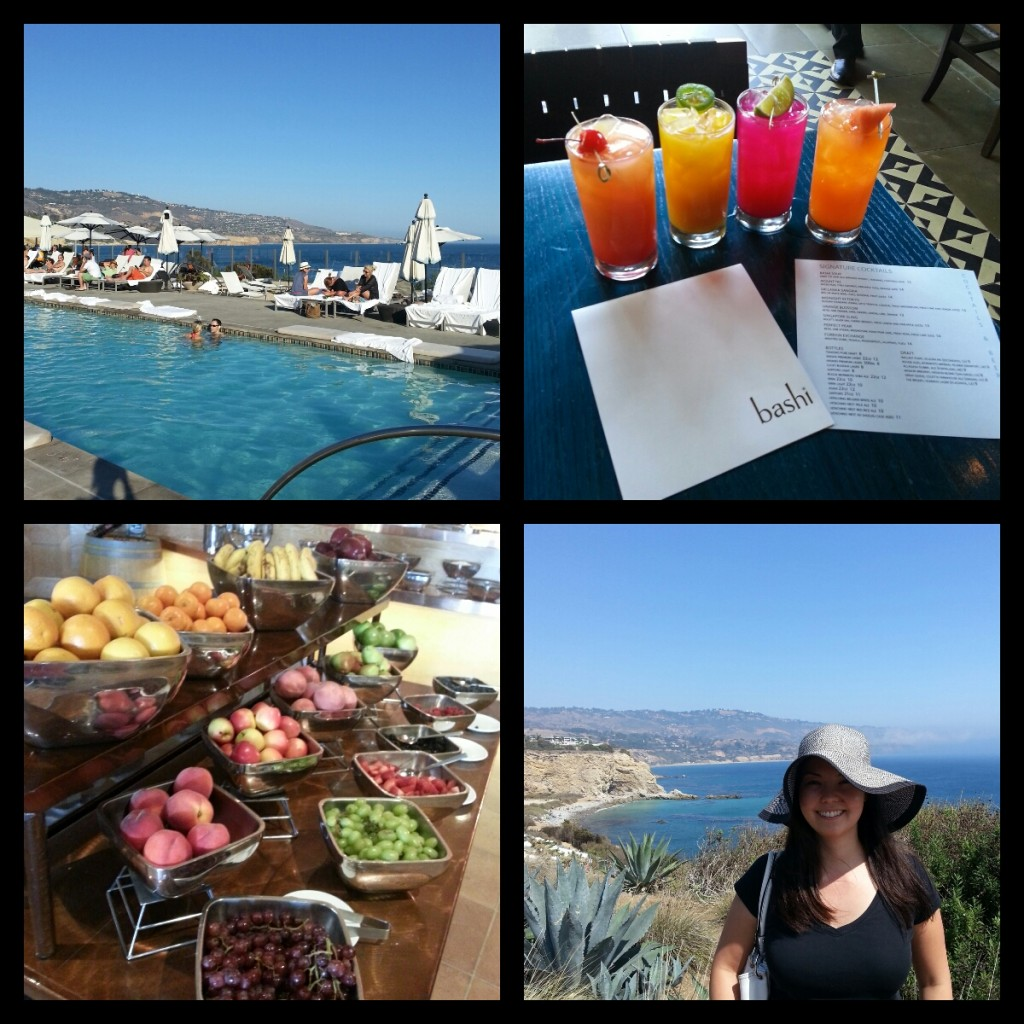Terranea collage